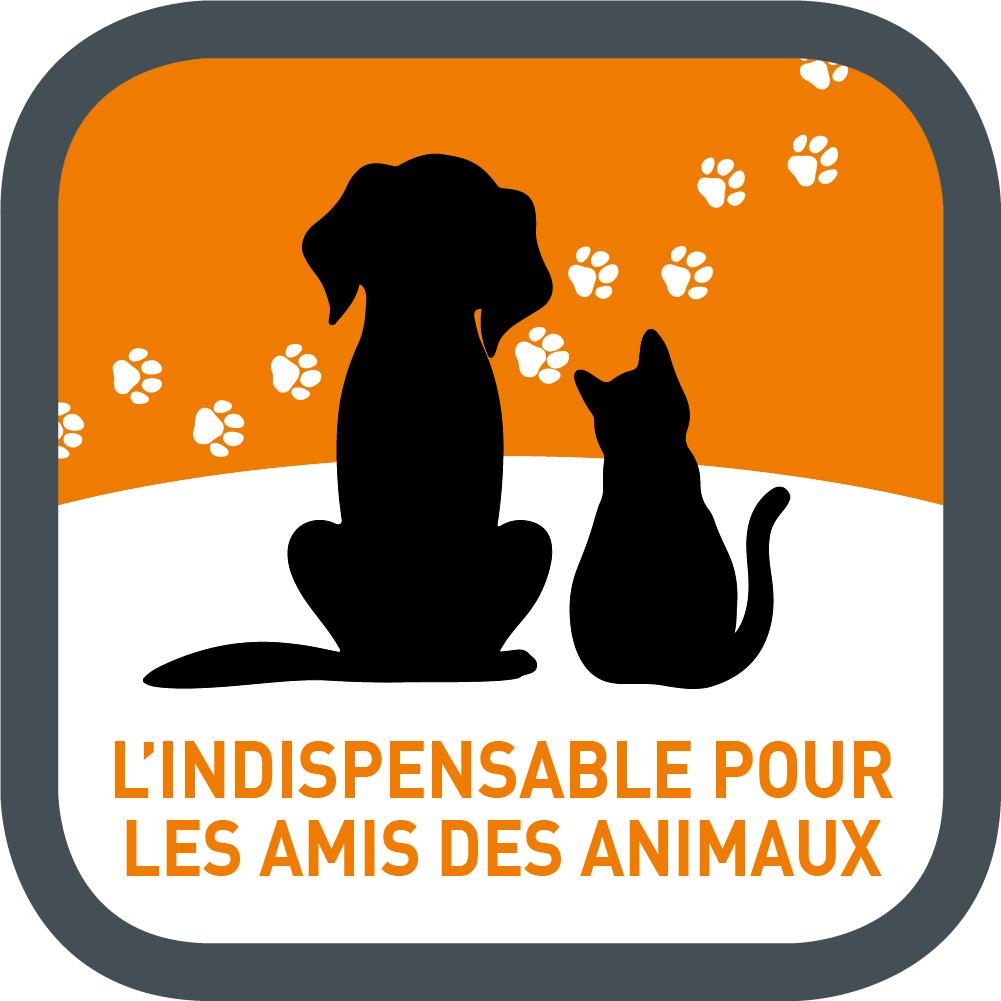 poils_animaux.jpg